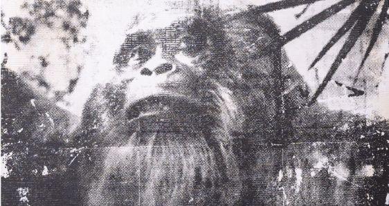 'Jungle Man', Paul Amundarain (2021)